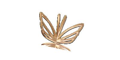 Kultasiipi-kaulariipus