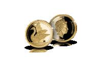 laulujoutsen-kultaraha