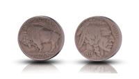 Wild west: buffalo coin